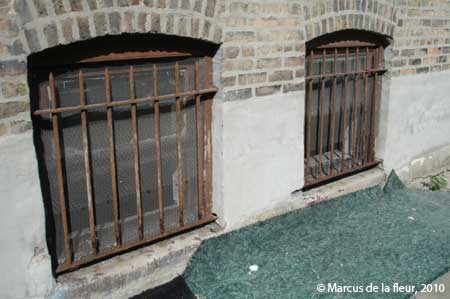Restoring window guards & Restoring window guards | Reshaping our Footprint