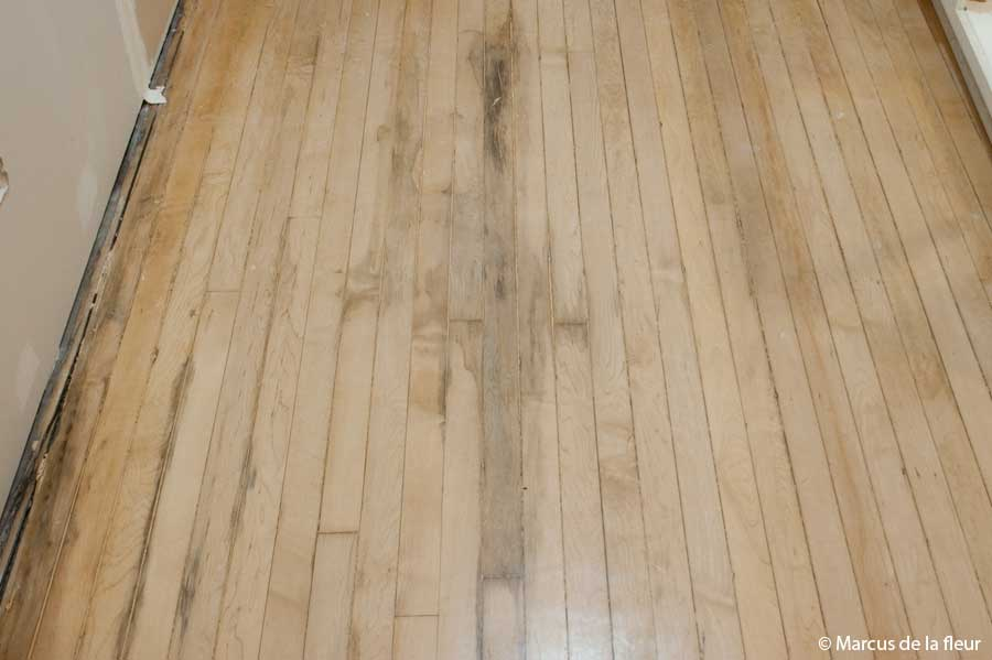 Flooring Reshaping Our Footprint Page 2