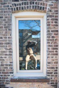 window-48